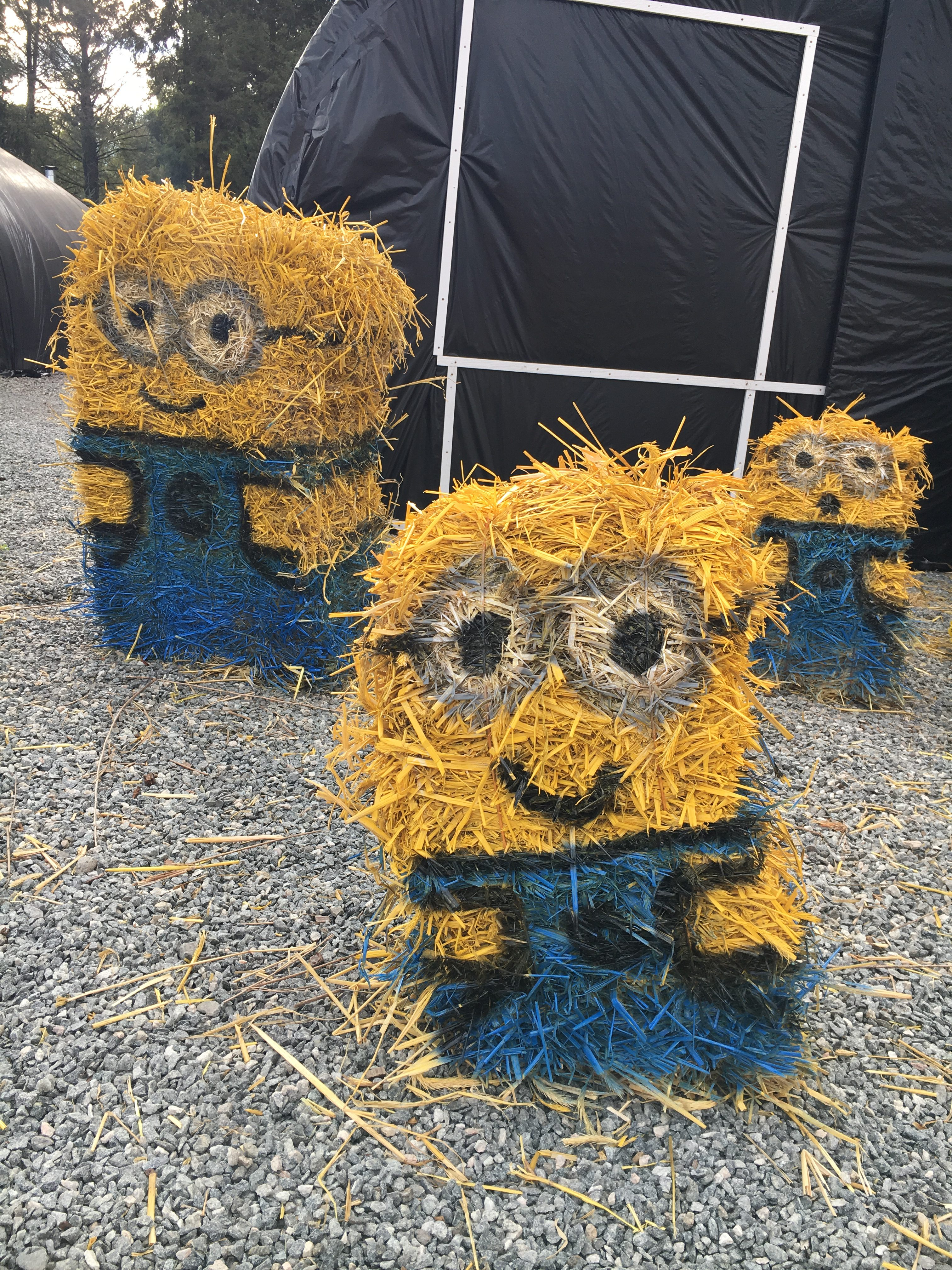 These too can be yours! Minions for sale!