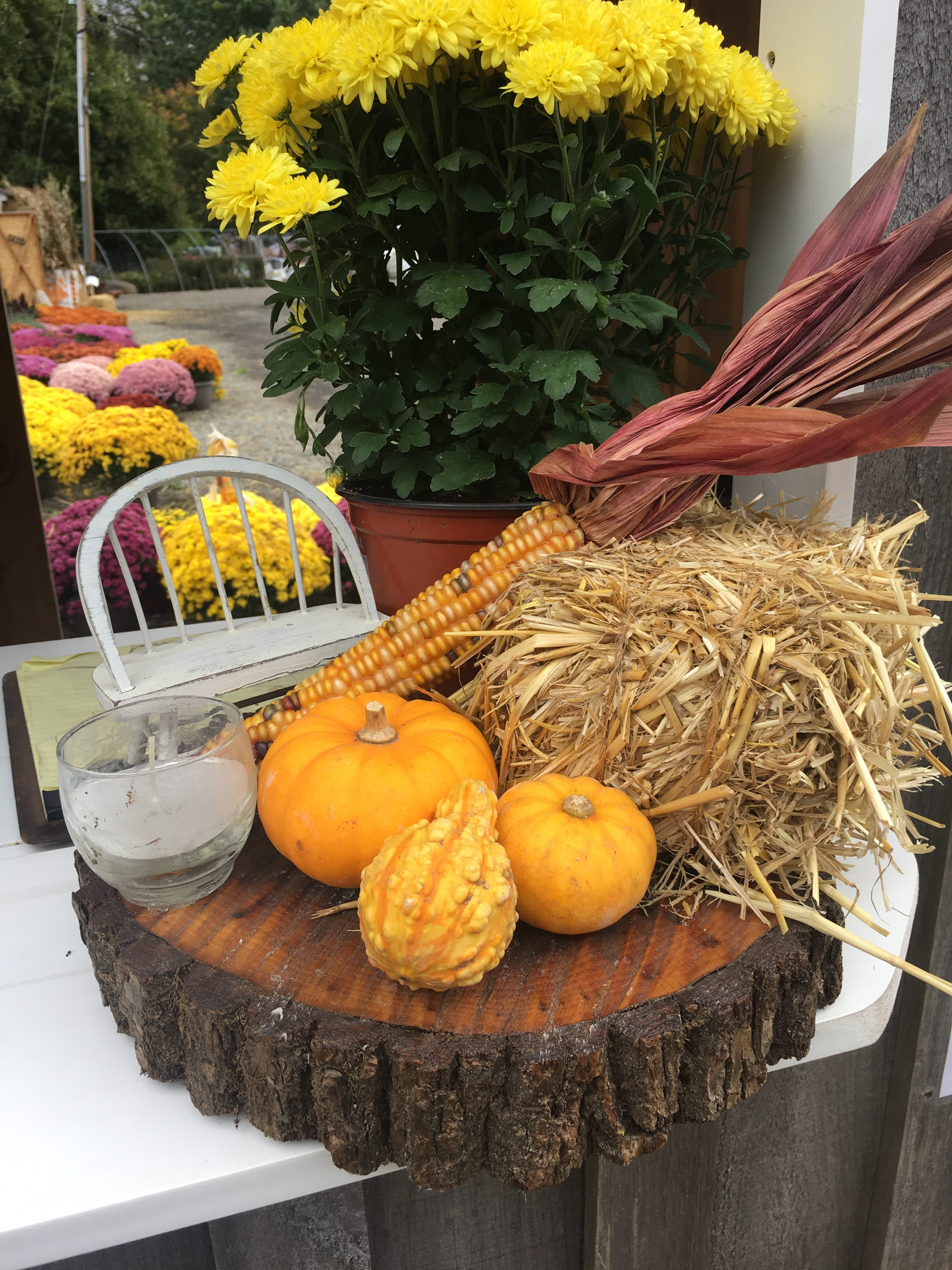 Handmade Fall Decor for sale! It's perfect for a fall table display!